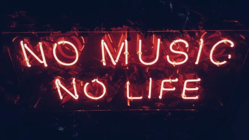 no music no life musicologica